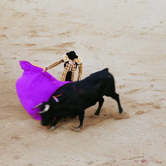Visitors to Merida, Mexico can see live bull fighting for themselves.