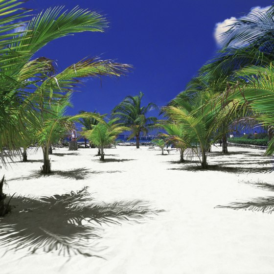 Chankanaab National Park is a favorite shore excursion for Cozumel cruises.