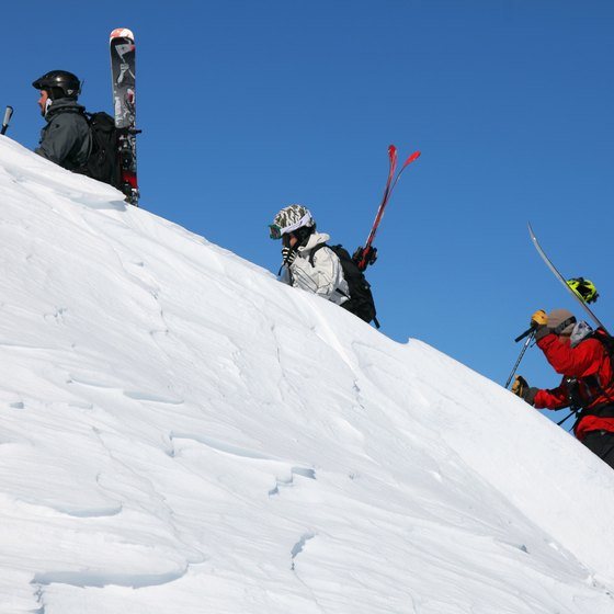 Silverton Mountain offers expert ski terrain.