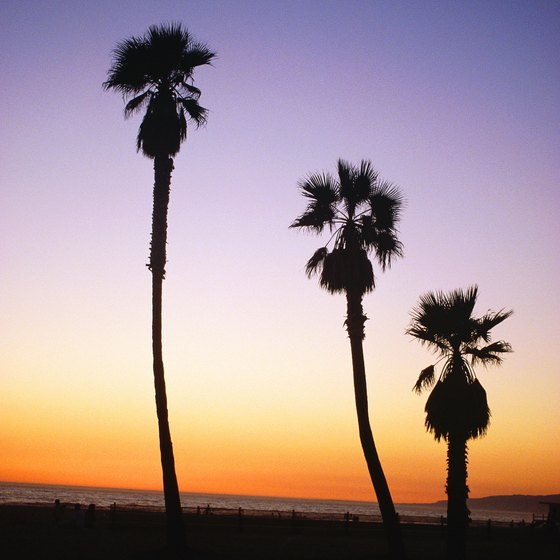 Venice, California, beaches offer magnificent backdrops for summer weddings.