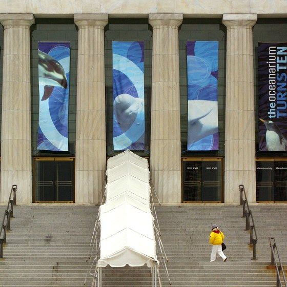 Shedd Aquarium is one of the attractions for children near Union Station.