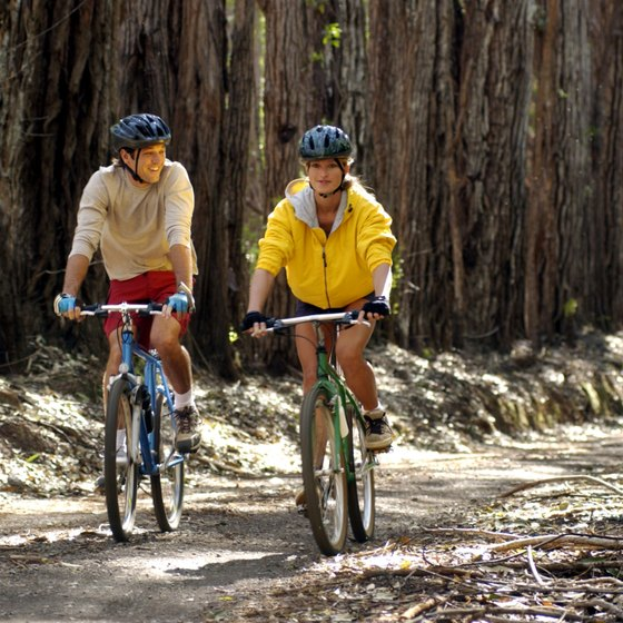 Northern California is one of the most bike-friendly areas in the United States.