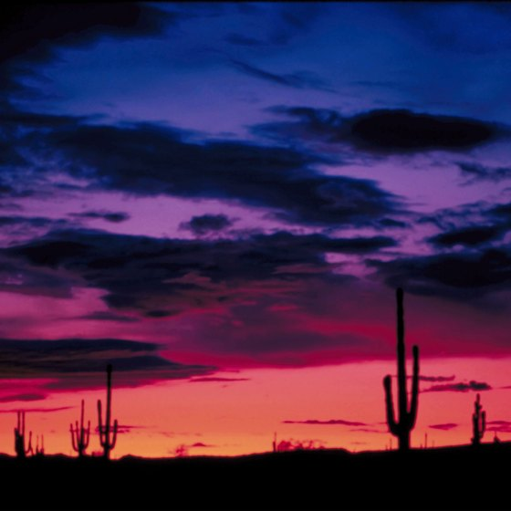 Ajo, Arizona is in the Sonoran Desert.