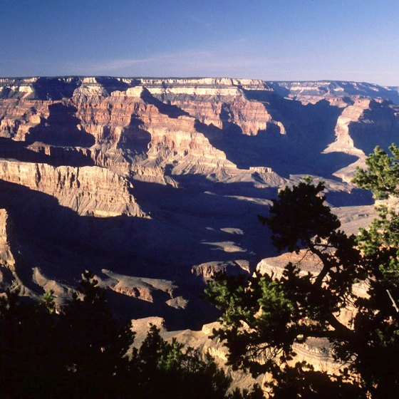 The Grand Canyon area provides several resources for horseback riding.