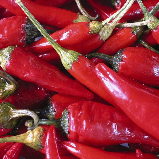 Spicy chili peppers are a signature ingredient in Calabrian dishes.