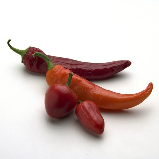 """Hatch chiles"" refers to several varieties of chiles grown in the region."