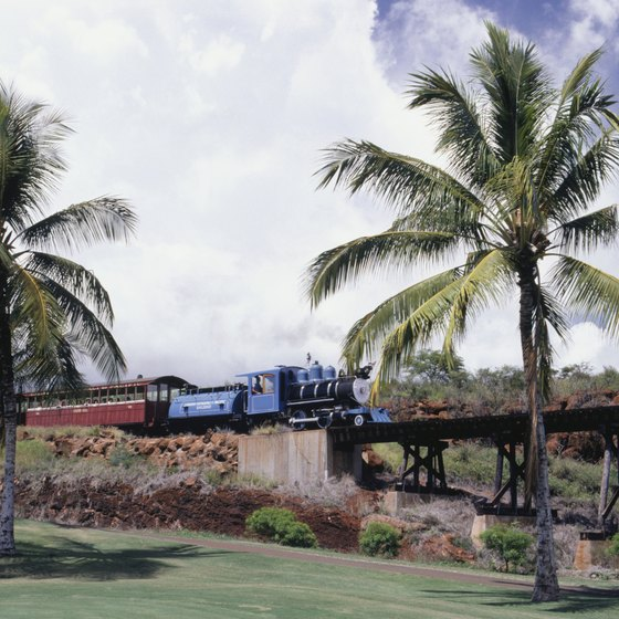 Take the Sugar Cane train to discover Lahaina's plantation past.