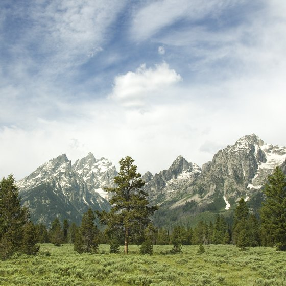 See the majestic mountains and valleys of the Grand Tetons on a trail ride.