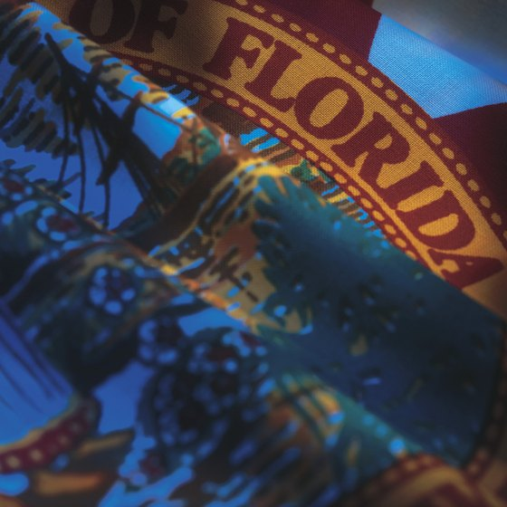 Florida is usually known as the home of Disney World, but there is so much more to see and do in the Sunshine State.