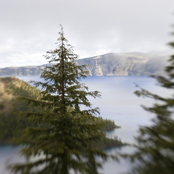 Crater Lake National Park has a path that leads to a swimming-friendly area.