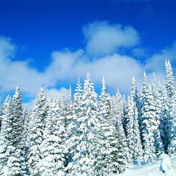 Enjoy winter scenery hiking in Steamboat Springs.