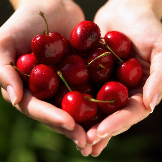Michigan's National Cherry Festival takes place in June and July.