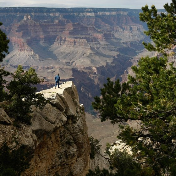Jeep and safari tours allow an up-close experience of the Grand Canyon.