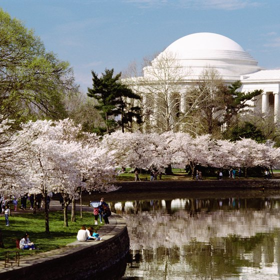 The Cherry Blossom Festival is a busy time in Washington.