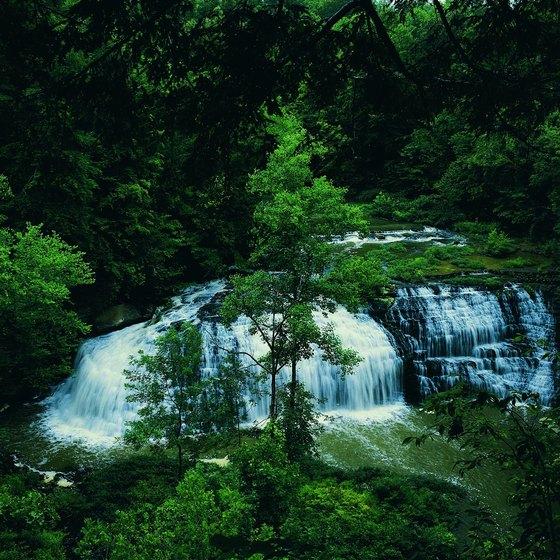 Burgess Falls is a 130-foot waterfall that spills into Center Hill Lake.