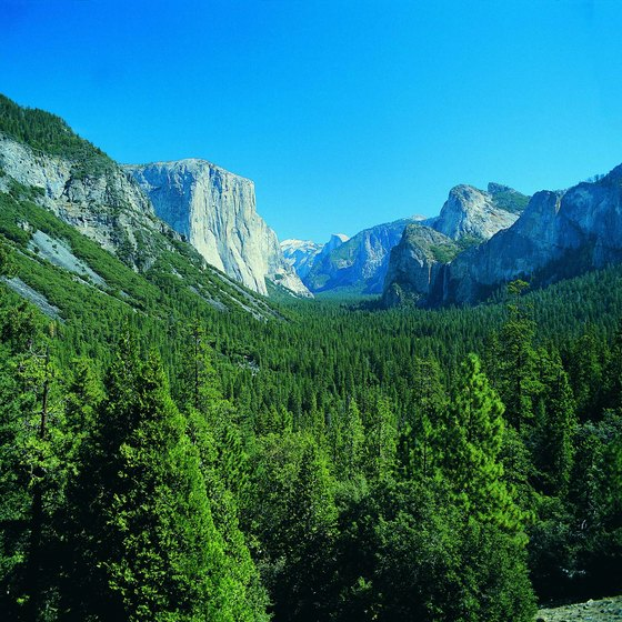 A bike ride offers one of the best ways to enjoy Yosemite Valley.