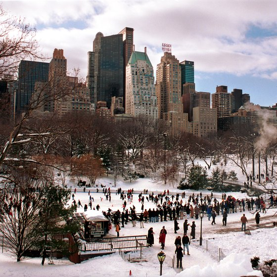 New Yorkers flock to Central Park when it snows.