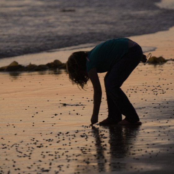 A silhouette of a child picking up shells at San Diego's Ocean Beach makes a nice vacation photo.