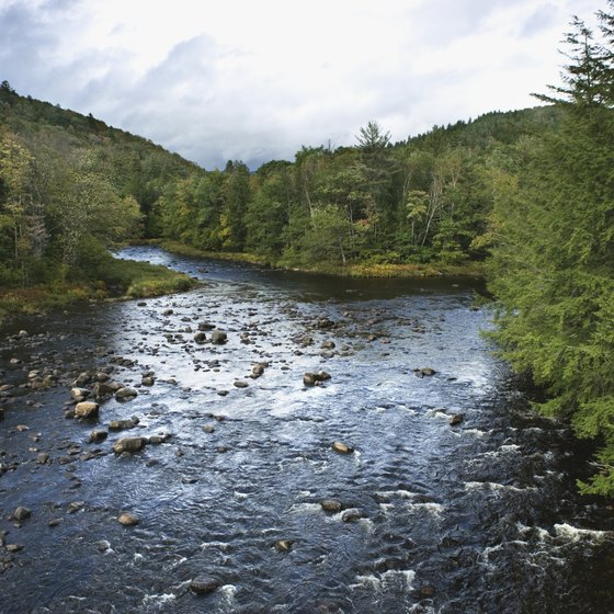 Rivers in the Adirondack and Catskill mountains offer boulder gardens and white water.