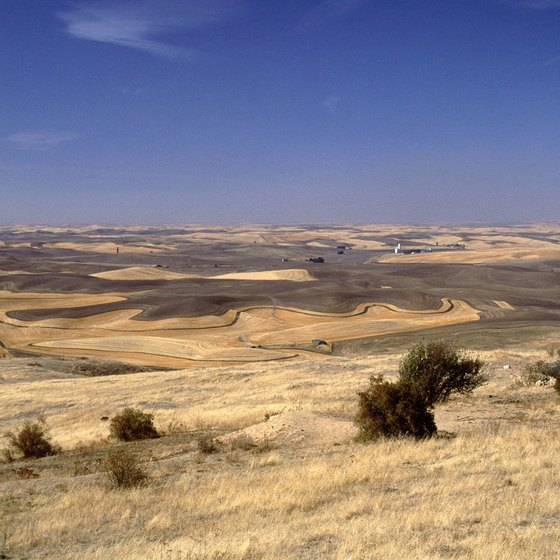 The Columbia Plateau occupies most of southeastern Washington.