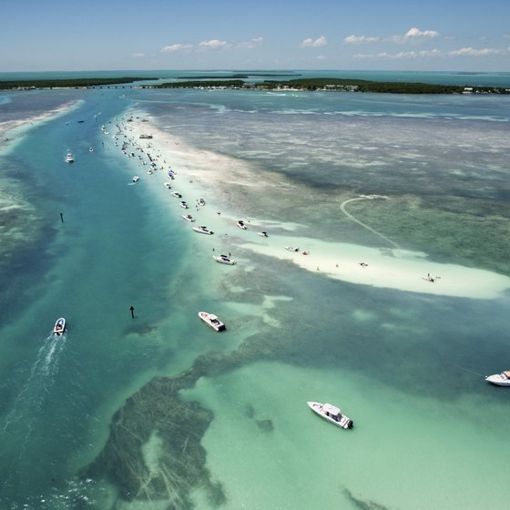 Key Largo is surrounded by coral barrier reefs teeming with tropical fish.