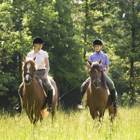 The village of Wauconda, in Lake County, Illinois, offers many trails and stables to accommodate equestrians and their horses.