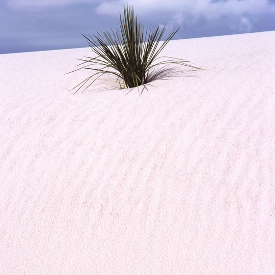 Blue skies and white sand are available all year at White Sands National Park in Alamogordo, New Mexico