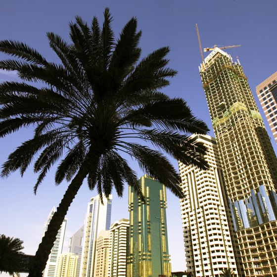 Dubai is one of the Middle East's premier vacation destinations.