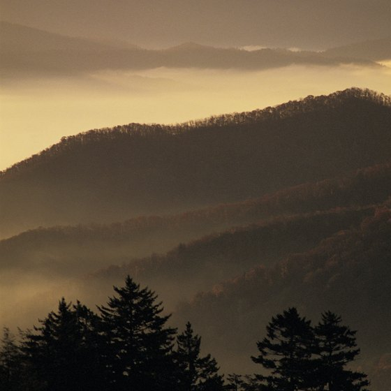Great Smoky Mountains National Park near Pigeon Forge offers more than 800 miles of hiking trails.