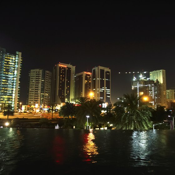 Dubai Creek is home to wetlands as well as sprawling development.