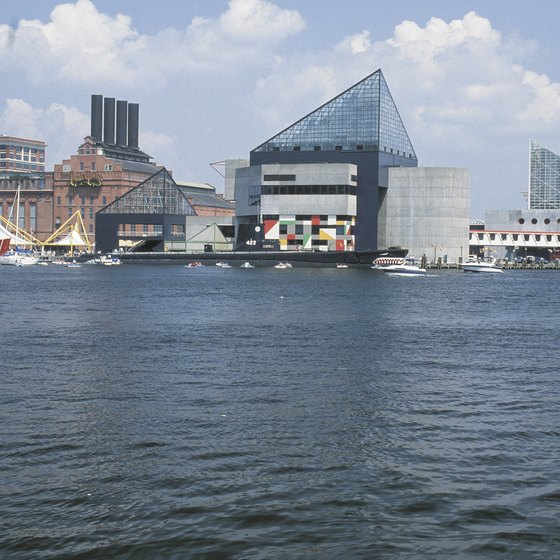View of Baltimore From the Harbor