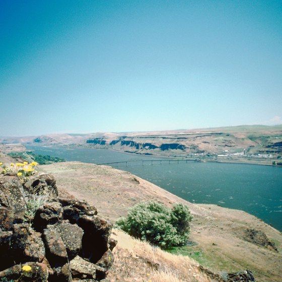 The Columbia River is a scenic backdrop for a wedding.