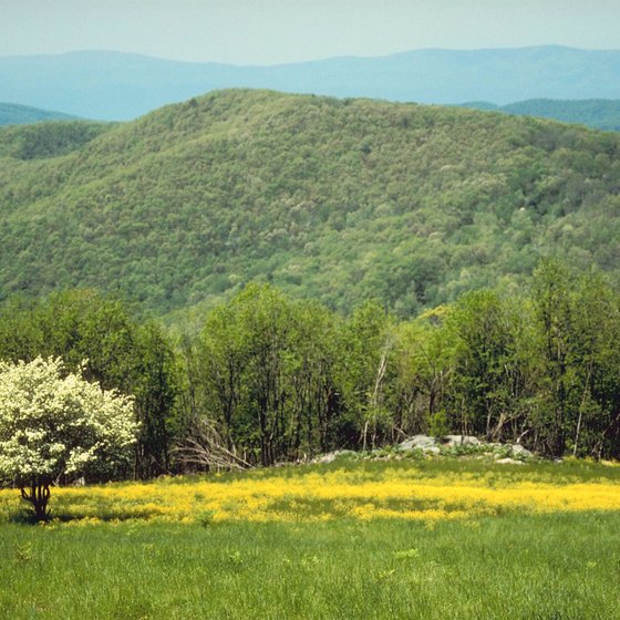 Fields and forests of Shenandoah National Park attract visitors.