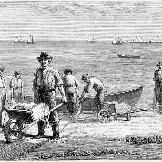The first settlers in New England quickly realized that fishing was mandatory for their survival.