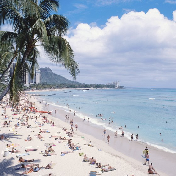 Waikiki Beach offers an ideal place for beginners to learn to snorkel in gentle conditions.