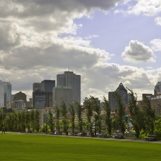 A view of the Montreal skyline.