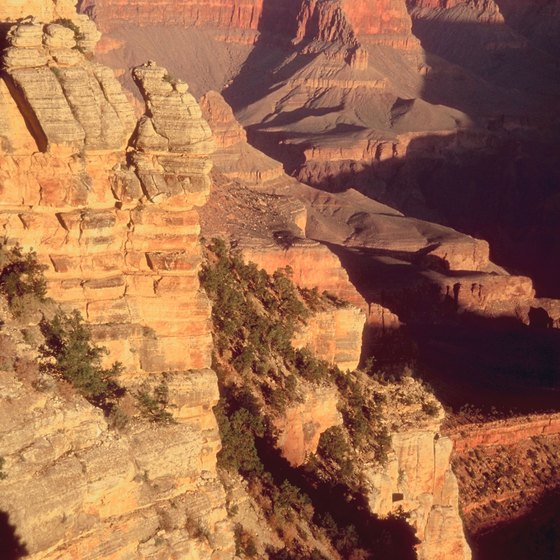 The Grand Canyon has much to offer all year round.
