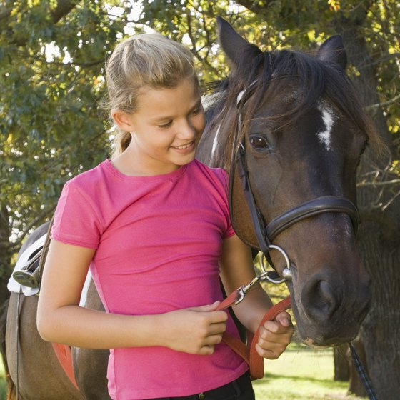 Several Cambridge-area stables offer horseback riding lessons, camps and trail rides.
