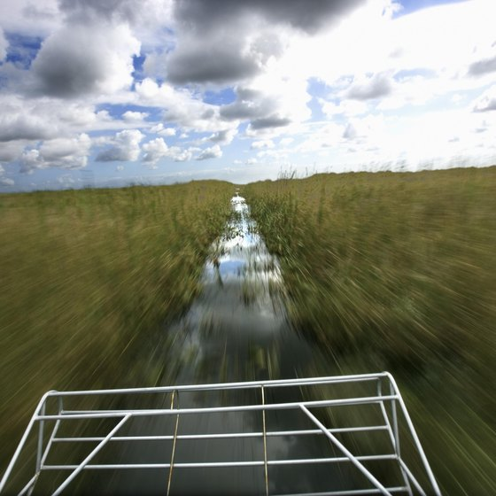 Everglades airboat tours give a closer view of ecosystems and wildlife.