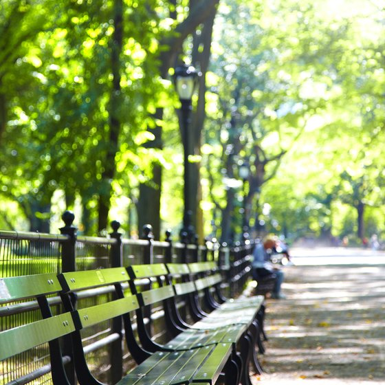 Single travelers may enjoy people watching on a park bench.