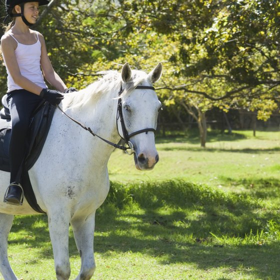 Horseback riding camps help kids learn the skills necessary to safely ride a horse.