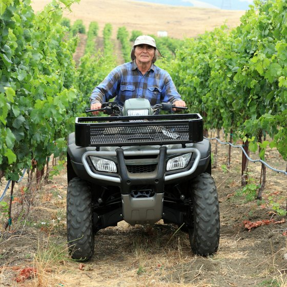 Leave vineyards behind to enjoy four-wheel drive trails east of Napa Valley.