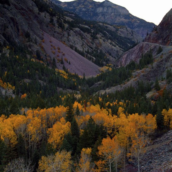 Head to scenic views off the beaten track near Ouray.