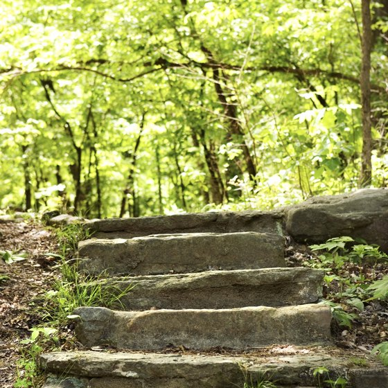 Stroll with your sweetheart along trails in Ozark National Forest.