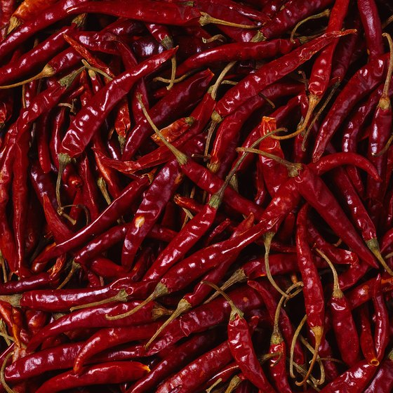 The Chile Pepper Festival features hot peppers from nearby Meadowview Farms.