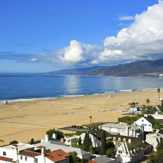 Soak up some rays on the sandy shores of Santa Monica.
