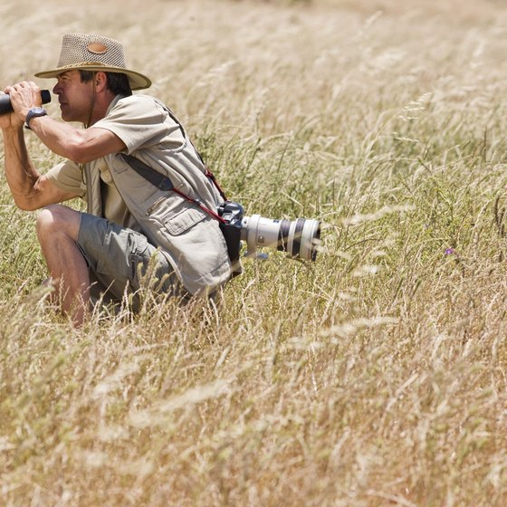 Remember to take your binoculars on your trip, so you can see the local wildlife.