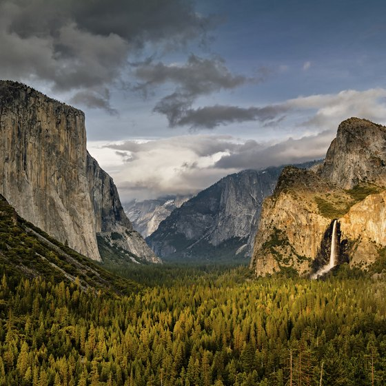 One day at Yosemite and you'll wish for longer days.