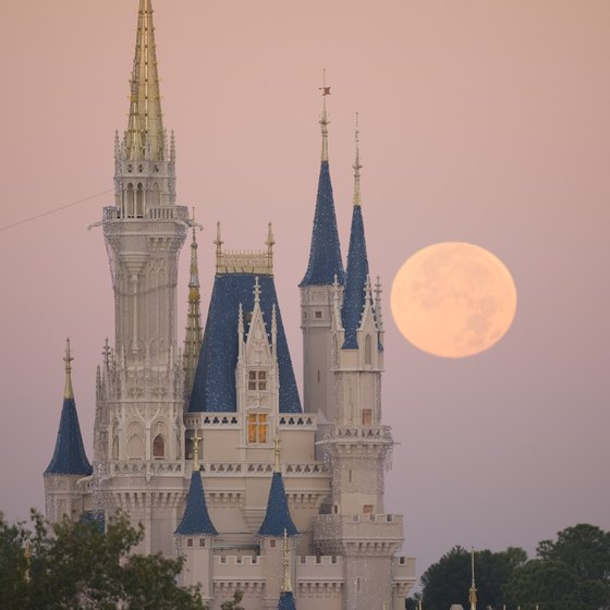 An activated annual pass gives you access to Cinderella's castle and other Walt Disney World attractions.