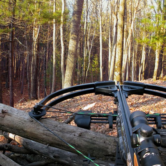 Pennsylvania Crossbow Hunting Laws